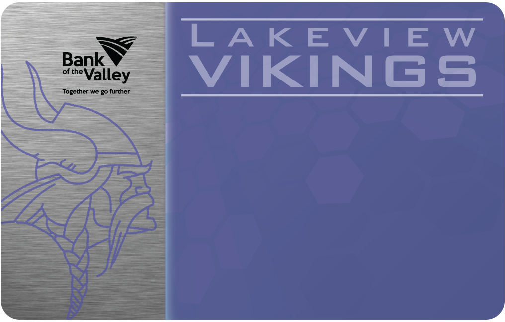 Lakeview Vikings #1