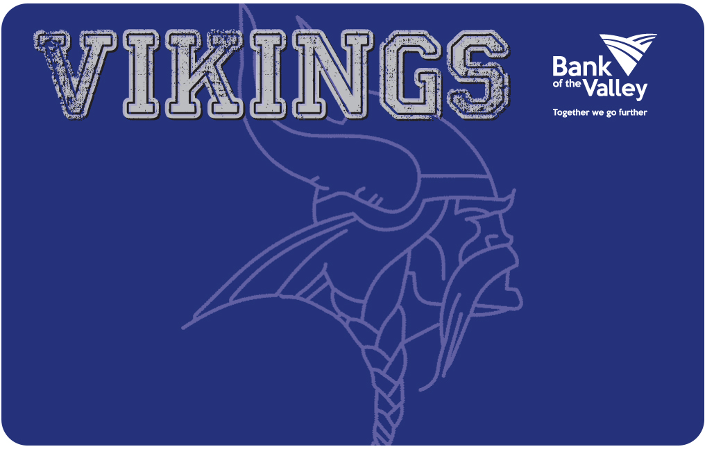 Lakeview Vikings #2